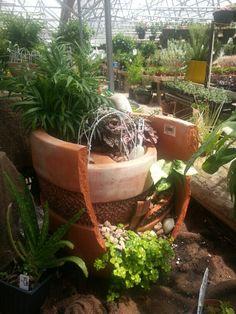 Nice Use Of A Broken Pot To Create A Multi Level Indoor Garden.