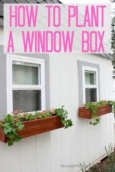 WINDOW BOX -- How to