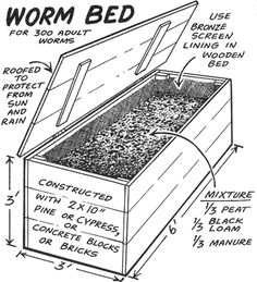 Make a worm bed for 300 adult worms, & the how-tos of worm composting. Worm Farm Diy, Earthworm Farm, Worm Beds, Red Worms, Bokashi, Garden Compost, Worm Composting, Earthworms, Wooden Tops