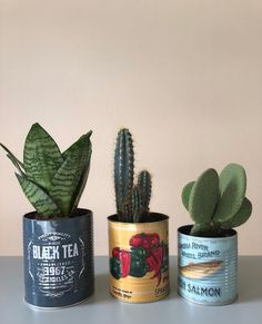 Canned trio ♡