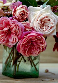 English Tea Roses. Gorgeous accompaniment to some Peony bushes