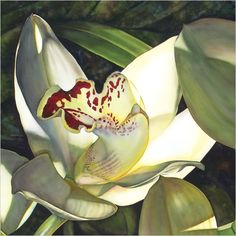 Pale Orchid I