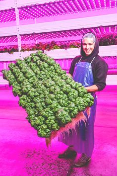 Vertical farming refers to crop production inside a controlled environment building, usually without soil or natural light. Backyard Aquaponics, Aquaponics Plants, Hydroponics System, Hydroponic Gardening, Plants In Jars, Inside Plants, Sustainable Farming, Urban Farming, Organic Farming