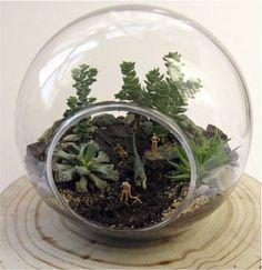 Un micromundo pensado para personas sensibles a la naturaleza y el arte, que deseen observar y cuidar un jardín donde ocurre una pequeña historia con figuras en miniatura. Eso es lo que propone Co…