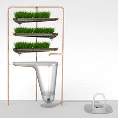 The Microbial Home / 2011 - Peter Gal | Product designer | Amsterdam