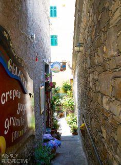 Gelato - Cinque Terre, Italy #travel #italy #cinqueterre www.hotelmorchio.com