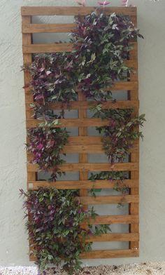 #Gigi #Botelho #Landscaping #Paisagismo #Jardim #Varanda #PainelVerde #Pallet