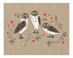 Owl Beauties