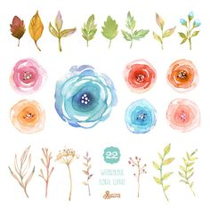 Acuarela Floral elementos: 22 gráfico Digital. Pintadas
