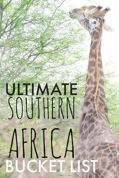 A safari in South Africa, swimming in Mozambique, Cruising in Zimbabwe, or seeing the dunes of Namibia. Here is the greatest Southern Africa bucket list.