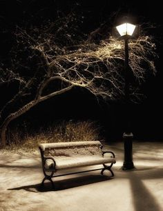 Night Bench by Doug Hagadorn Nature Pictures, Cool Pictures, Night Aesthetic, Moon Photography, Winter Magic, Winter Scenes, Beautiful World, Scenery, The Incredibles