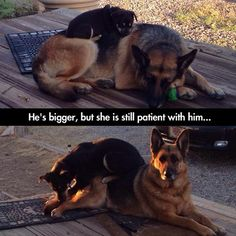 Funny Pictures Of The Day – 70 Pics :)