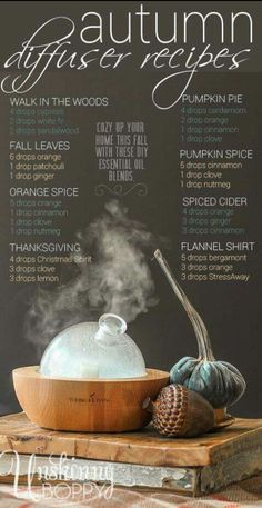 Usher in the fall with these scrumptious diffuser ideas that will not only smell amazing but will support all of your healthy body systems!