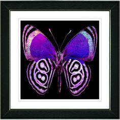 Studio Works Modern 'Zebra Butterfly - Purple' Framed Print | Overstock.com Shopping - The Best Prices on Framed Art
