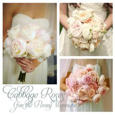 cabbage roses!!! Love.
