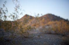 http://www.abeautifulmess.com/2012/04/free-lensing-photography-tutorial.html#