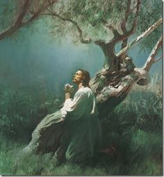How come the Lord's Prayer as recorded in the New Testament and the Book of Mormon contains no expression of thanks or gratitude? We are taught this is to be a model for our prayers. Arte Lds, Mormon Doctrine, 1 Thessalonians 5 17, Agony In The Garden, Prayer Garden, Jesus Photo, Pictures Of Jesus Christ, Lds Art, Love The Lord