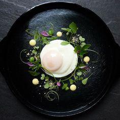 - Fried egg l Hollandaise l English muffin crumbs -ll