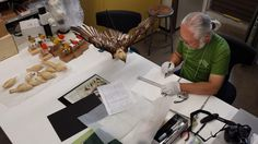 Haruo Uchiyama sculpts intricate, life-size birds to teach the world about evolution and extinction. His current mission: modeling 40 species of Hawaiian honeycreepers. (Also makes crane puppets for ACRES)