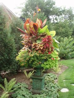 Container Gardening Pictures   ... service for a flower shop we provide container gardening services