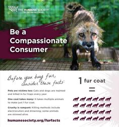 Before you buy fur, consider these facts...
