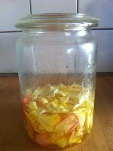 Fangen wir den Sommer ein! Hier habe ich bereits geschrieben, wie man aus getrockneten Rosenblüten Rosenöl herstellt und wie man das Öl verwenden kann. Nun, da die Tage heiß sind und die Rosen sich…