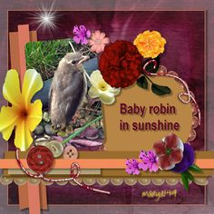 This project was a learning experience--created in CraftArtist Compact. My creative juices were really happening on this one. Baby robin was in my yard when I captured him on camera. Thanks for viewing. Baby Robin, My Scrapbook, Juices, Compact, Thankful, Yard, Learning, Create, Artist