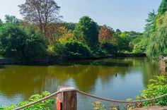 Atatürk Arboretumu - İstanbul Fotoğraf: Osman Geleş