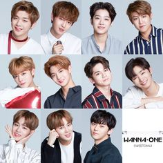 Lotteria twt x Wanna One