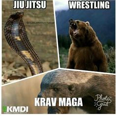 Krav Maga has become one of the potent combat trainings in the world. The International Krav Maga Federation is the apex body of such combat tr Self Defence, Krav Maga Self Defense, Israeli Krav Maga, Learn Krav Maga, Combat Training, Street Fights, Boxing Workout, Aikido, Mixed Martial Arts