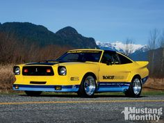 monroe handler cobra ii | Monroe Handler 1978 Ford Mustang II - The Handler Photo Gallery