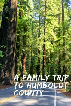 A Family Trip to Humboldt County, California, USA