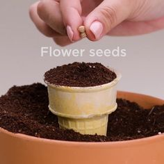 You will wet your plants with these unusual gardening hacks!You will wet your plants with these unusual gardening hacks!DIY You will wet your plants with these unusual gardening hacks!You will wet your plants with these unusual gardening hacks! Diy Home Crafts, Garden Crafts, Garden Projects, Garden Tools, Garden Trowel, Outdoor Projects, Creative Crafts, Growing Plants, Growing Vegetables