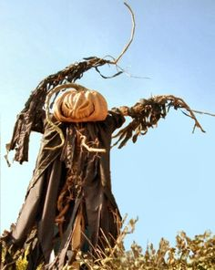 Spooky Blue - Halloween Projects - Scarecrow - Terror on a stick  HAVE to make one of these!!