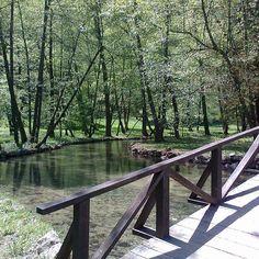 Sourse of river Bosnia, Ilidža, Sarajevo Bosnia, River, Natural, Rivers, Nature, Au Natural