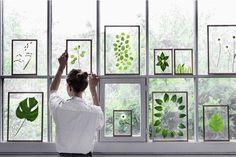 Realizzare un quadro creativo con foglie e fiori! 22 esempi bellissimi (VIDEO)