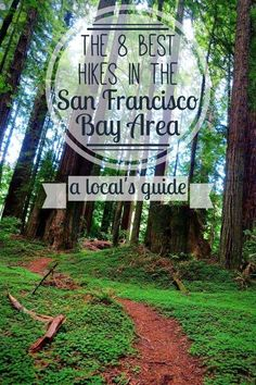 A local's guide to the 8 best San Francisco Bay Area hikes. I bet you haven't heard of a few of these!