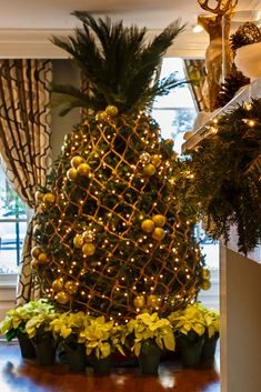 Known for its Southern hospitality and charm its only fitting that The Marshall House hotel in Savannah creates a pineapple Christmas tree each holiday season. The tropical fruit is a symbol of hospitality and though we are huge fans of decorating actu Christmas Tree Painting, Christmas Tree Themes, Holiday Tree, Christmas Tree Decorations, Christmas Crafts, Xmas Trees, Coastal Christmas Decor, Southern Christmas, Beach Christmas