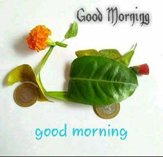 If you want to send good morning love images to your friends and relatives then you have the best good morning images available on our website. Morning Wishes Quotes, Good Morning Messages, Good Morning Greetings, Good Morning Wishes, Good Morning Quotes, Morning Gif, Morning Kisses, Morning Coffee, Lovely Good Morning Images