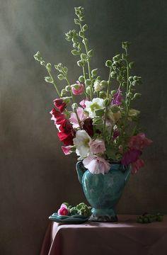 35PHOTO - Елена Татульян - Мальвы