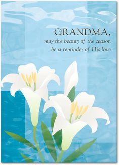Lilies in Bloom - Easter Cards in Coast | Magnolia Press