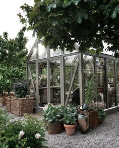 There is no more hurdle to know how to do greenhouse gardening? Greenhouse gardening is only possible in the best climatic conditions and weather variables. Backyard Greenhouse, Small Greenhouse, Greenhouse Ideas, Homemade Greenhouse, Growing Plants, Growing Vegetables, Formal Garden Design, Low Maintenance Garden, Garden Cottage