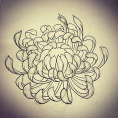 Chrysanthemum sketch by rebekka rekkless via Japanese Flower Tattoo, Japanese Tattoo Designs, Japanese Flowers, Crisantemo Tattoo, Chrysanthemum Drawing, Japanese Chrysanthemum, Tattoo No Peito, Hannya Tattoo, Asian Flowers