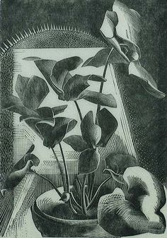 Gertrude Hermes, Cyclamen: Signed, titled, dated and numbered in pencil. Engraving Printing, Wood Engraving, Schmidt, Scratchboard, Hermes, Illustrations And Posters, Graphic Illustration, Flower Art, Printmaking