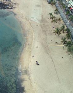 Belleza única: palmeras, playas y un mar de sueño, para unas vacaciones de cinco estrellas
