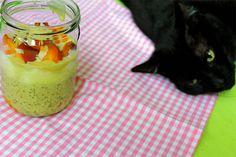 Ist die Katze nicht ein schöner Kontrast zu Marias buntem Frühstück?