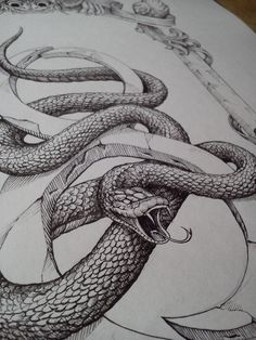 Sneight on Behance Animal Sketches, Animal Drawings, Art Sketches, Snake Drawing, Snake Art, Tattoo Drawings, Art Drawings, Tattoos, My Art Studio