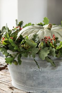 White pumpkin and greenery in a bowl! simple fall decor, Thanksgiving, Harvest Autumn Parties - Wedding too! Imagine this on each table at a Fall wedding! White Pumpkins, Fall Pumpkins, Fall Home Decor, Autumn Home, Palette Verte, Deco Nature, Fall Arrangements, Autumn Decorating, Decorating Ideas