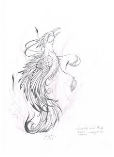 Phoenix tattoo to represent rising from the ashes & being made new.
