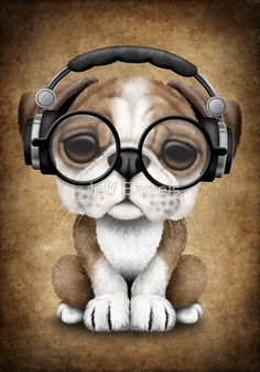 English Bulldog Puppy Dj Wearing Headphones and Glasses